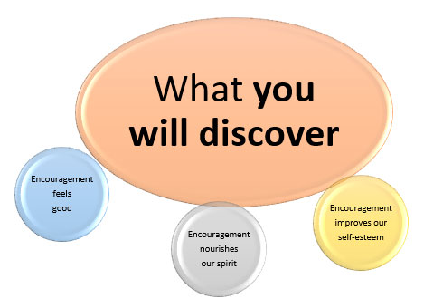 what you will discover